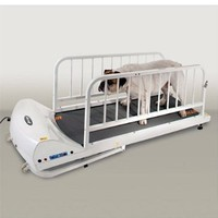 PetRun PR720E Dog Treadmill by GoPet