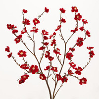 Red Velvet Plum Blossoms, Set of 2 | World Market