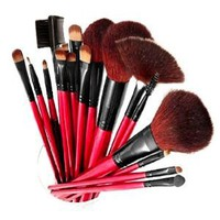 Shany Professional Cosmetic Brush Set with Pouch (Color May Vary), 13 pc
