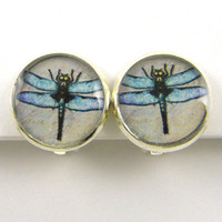 Dragonfly Clip Earrings - Blue Silver Insect Clip on Earrings