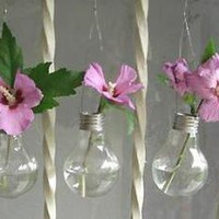 Recycled Light Bulb Hanging Vases | Care2 Healthy & Green Living