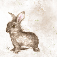 Happy Bunny. Rabbit. Hare. Fine Art Print from my Original Drawing. Woodland Animal