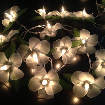 fairy string lights for home decor party from