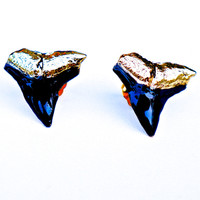 Large Black Shark Teeth Studs
