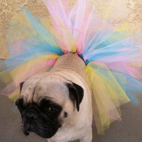 Tutu- Dog Tutu- Birthday Tutu- Clothes for Pugs- Costumes