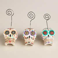 Mini Skull Photo Clips, Set of 3