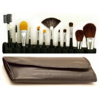14 Piece Master Makeup Brush Applicator Set