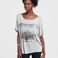Vintage Havana Boxy Tee with Tree Graphic - Contemporary - Bloomingdales.com