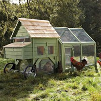 Alexandria Chicken Coop & Run