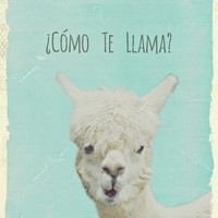 *** FUNNY LAMA ***  Art Print by Monika Strigel in more sizes!