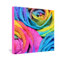 DENY Designs Home Accessories | Lisa Argyropoulos Rainbow Swirl Gallery Wrapped Canvas
