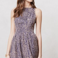 Ruffled Chroma Dress