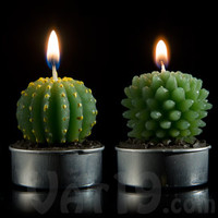 Cactus Tea Light Candles: Set of 16 mini cactus candles
