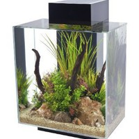 Fluval Edge, 12 gallon Aquarium with 42-LED Light, Black