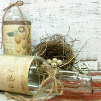 Altered Bottles,Thanksgiving,Christmas,Bird Eggs,Nest,Fall Wedding,Winter Wedding,Barn Wedding,Bridal Shower,Rustic Wedding Decor
