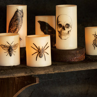 Haunting Nights LED Candles - Halloween