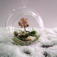 Dome Ornament Terrarium by wendiland on Etsy