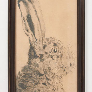Rabbit Profile Framed Art