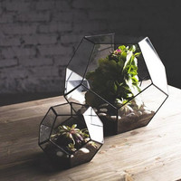 "glass terrarium ""dodecahedron"""
