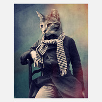 John Keddie: Cat In Scarf 11x14, at 47% off!