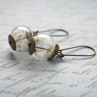 Dandelion Earrings Real Seeds 08 Make A Wish by NaturalPrettyThingsjewel
