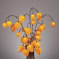 "Everlasting Glow LED 31"" Chinese Lantern With 30 Clear Rice Lights, Orange Detail"