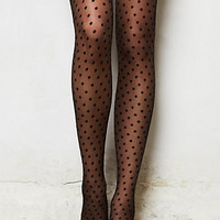 Glistened Garden Tights