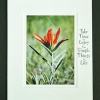 Indian Paintbrush, Inspirational Quote, Brighten your world, Colorful Wall Art, Matted 5x7 Print, Unique Gift, Affordable Decor