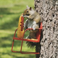 Red Retro Lawn Chair Squirrel Feeder - Plow & Hearth