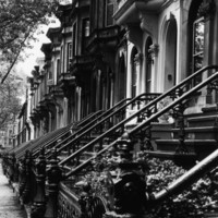 Stoops on 19th Century Brooklyn Row Houses Photographic Print by Karen Tweedy-Holmes at eu.art.com