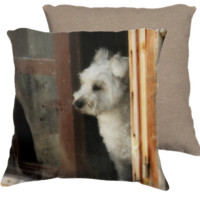 Window Watcher Pillow Cover, Velveteen