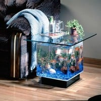 End Table Aquarium - Opulentitems.com