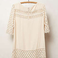 Lacedot Blouse