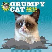 Grumpy Cat 2014 Wall Calendar - Whimsical & Unique Gift Ideas for the Coolest Gift Givers