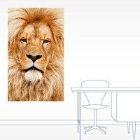 Lion Photo Wall Decal