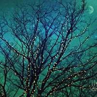 Magical Night Photograph by Sylvia Cook - Magical Night Fine Art Prints and Posters for Sale