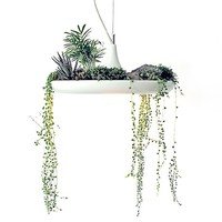 Babylon Plantable Lamp -16%