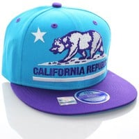 California Republic Flat Bill Vintage Style Snapback Hat Cap Teal Purple