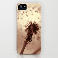 winter sunshine iPhone & iPod Case by ingz