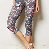 Pure + Good Floral Crop Leggings