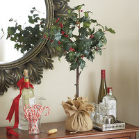 Holly Topiary | Ballard Designs