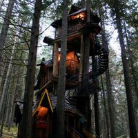 Fantasy Forest Tree House Straight out of a Kids Story Book | Designs &amp; Ideas on Dornob
