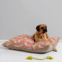 Lisa Argyropoulos Gone Bananas In Pink Pet Bed