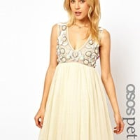 ASOS PETITE Mesh Swing Dress With 3D Floral Embellishment