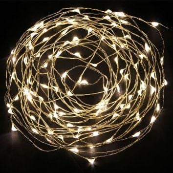 MuchBuy 5V DC Starry Copper Wire LED Lights(silver Coating), 33Ft LED String Light with Power Adapter Supply, Including 100 Warm White Individual Leds