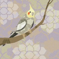 Cockatiel Art Print by Lorri Leigh Art