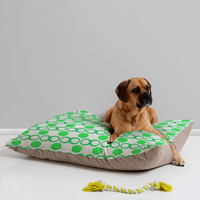 Lisa Argyropoulos Retrocity In Spearmint Pet Bed