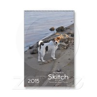 Jack Russell Terrier 2015 Dog Calendar from Zazzle.com