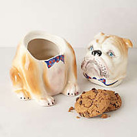 Pedigreed Cookie Jar, Bulldog
