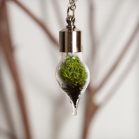 Terrarium Teardrop Necklace - Silver